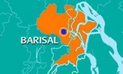 Man held for torturing 8-year-old domestic help in Barisal