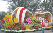 Flower festival to be held in city March 29-30