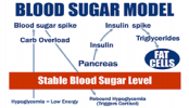 'Good' fat may keep your blood sugar stable