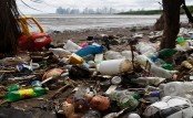 Caribbean nations are trying to make styrofoam illegal