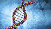 Our DNA less 'human' than scientists previously thought!