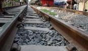 Dhaka-Mymensingh rail link suspended