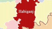 Bus driver, helper killed in Habiganj road crash