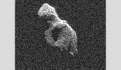 Comet's close brush with Earth seen in radar images