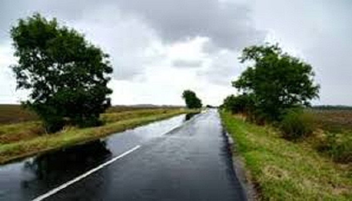 Rain or thunder showers likely