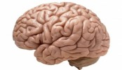 Deep Brain Stimulation can improve life of Parkinson's patients