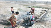 West Bengal: 65 out of  70 wells dry up in four months