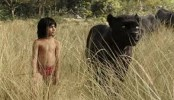 2,000 auditions for Mowgli's role in 'The Jungle Book': Director