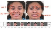 Researchers pinpoint part of the brain that recognizes facial expressions