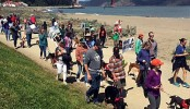Hundreds walk pooches to protest dog-walking limits