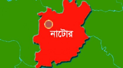 Schoolteacher killed in Natore road crash