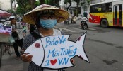 Vietnam Protesters Seek Answers Over Mass Fish Deaths