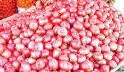 Onion still pricey in city markets