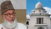 Hearing on Nizami's review plea Tuesday