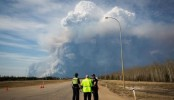 Canada wildfire: Alberta declares emergency
