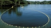 Ban on fishing in Kaptai Lake from May 12