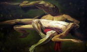 Pervaj Hasan's painting exhibition