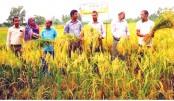 A field day was held in Paschim Belpukur village under Syedpur upazila