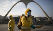 Germany reports 1st sexual transmission of Zika virus