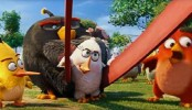 The Angry Birds Movie: Watch out for desi twist