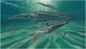 Creatures weren't safer in south during dinosaur extinction