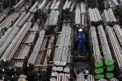 India targetting steel output of 300 mn tonnes: Sai