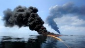 2010 Gulf oil spill pollution sent to seafloor