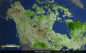 Arctic getting greener due to climate change: NASA