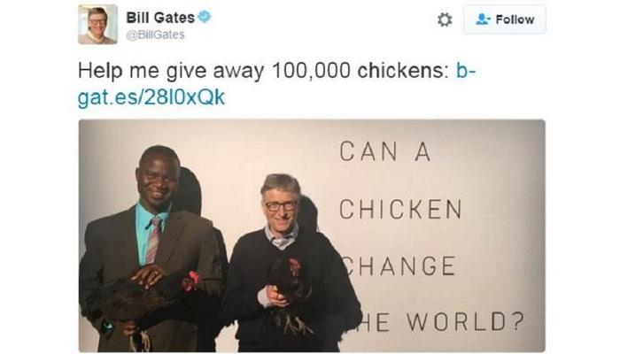 Bill Gates launches chicken plan to help Africa poor
