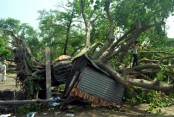 Storms kill 13 people in 5 districts