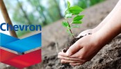 Chevron launches tree plantation drive