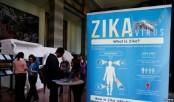 Promising Vaccines Developed Against Zika Virus