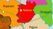 Two killed in Natore road crash