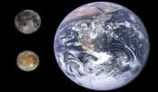 'Warm Jupiters' have got companions