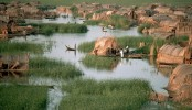 Iraqi marshlands named UNESCO world heritage site