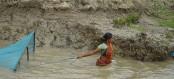 Prawn seeds catching weakening embankments, new book says