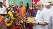 Cow survey going on in Bengal, claims BJP
