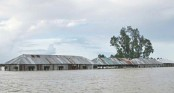 Flood forces 90 Shariatpur schools to shut down