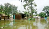 Sufferings unbounded for flood  in 4 dists