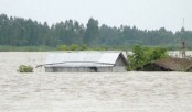 Kurigram flood situation still grim