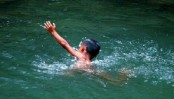 2 siblings drown in Laxmipur