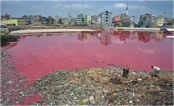 Tannery fined for polluting environment in Chittagong