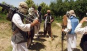Taliban key commander killed in Afghanistan