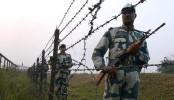 BSF kills Bangladeshi in Jhenaidah
