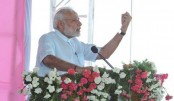 Punish 'fake' cow vigilantes: Modi