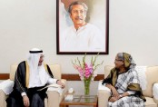Hasina wants OIC to play proactive role in combating terrorism
