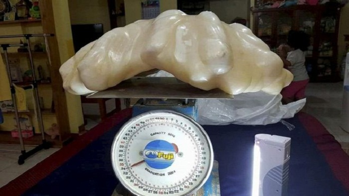 'World's biggest' 34kg pearl found in Philippines
