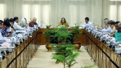 ECNEC okays 5 projects of Tk 987.80cr