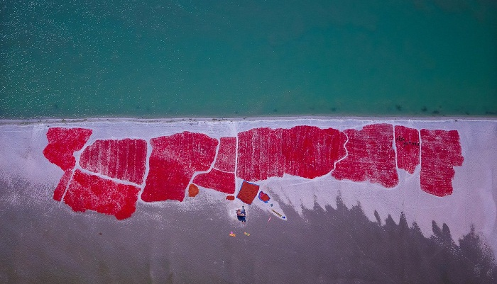 A pilot's view of Bangladesh – in pictures