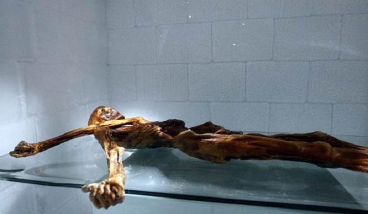 Stone Age Mummy Still Revealing Secrets, 25 Years On